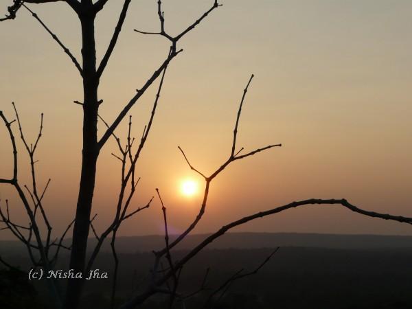 sunset kanha wildlife @lemonicks.com