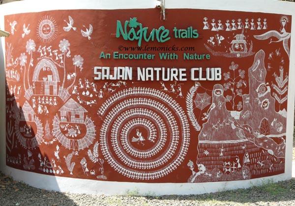 sajan nature club @lemonicks.com