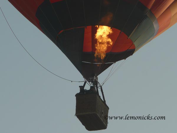 hot air balloon at pushkar @lemonicks.com