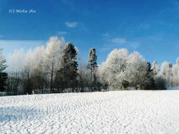 Poland in winters Snow in zakopane @lemonicks.com
