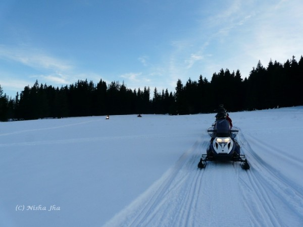 best places to snowmobile - snow mobile in zakopane @lemonicks.com