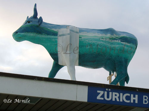 cows in zurich @lemonicks.com
