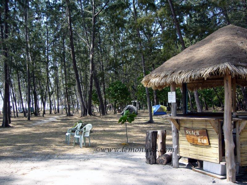 bamboo beach phi phi island