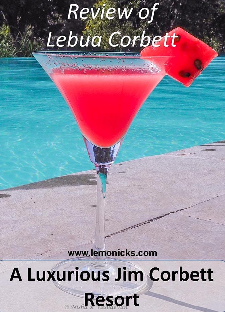 Infinity Pool, Lebua Corbett, one of the luxurious Jim Corbett resorts, Uttarakhand